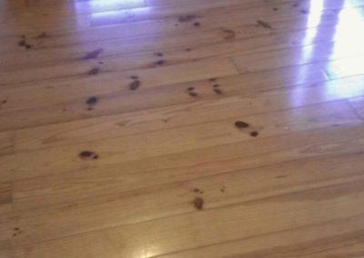 wooden floor presanding
