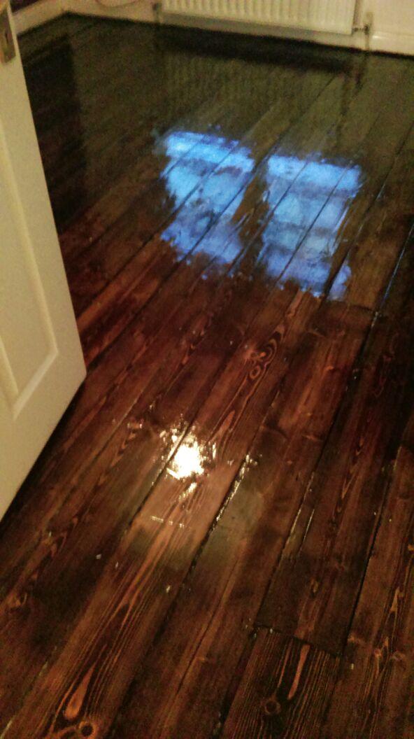 Freshly Varnished Wood Floor Wooden Floor Sanding Specialists